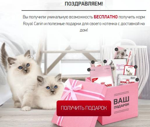 royal_canin.jpg
